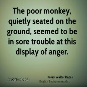 Henry Walter Bates - The poor monkey, quietly seated on the ground, seemed to be in sore trouble at this display of anger.