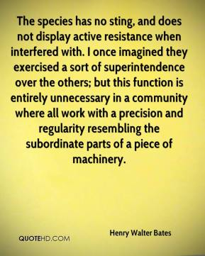 Henry Walter Bates - The species has no sting, and does not display active resistance when interfered with. I once imagined they exercised a sort of superintendence over the others; but this function is entirely unnecessary in a community where all work with a precision and regularity resembling the subordinate parts of a piece of machinery.