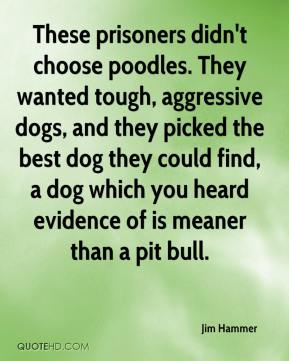 Jim Hammer  - These prisoners didn't choose poodles. They wanted tough, aggressive dogs, and they picked the best dog they could find, a dog which you heard evidence of is meaner than a pit bull.