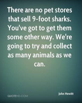 John Hewitt  - There are no pet stores that sell 9-foot sharks. You've got to get them some other way. We're going to try and collect as many animals as we can.