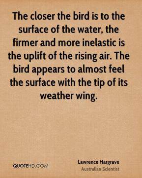 The closer the bird is to the surface of the water, the firmer and more inelastic is the uplift of the rising air. The bird appears to almost feel the surface with the tip of its weather wing.
