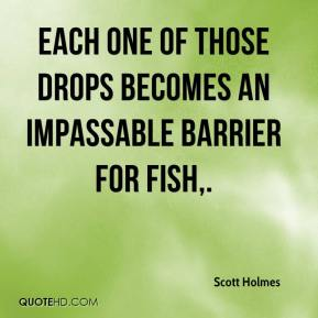 Scott Holmes  - Each one of those drops becomes an impassable barrier for fish.