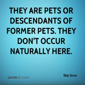They are pets or descendants of former pets. They don't occur naturally here.