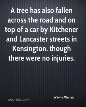 Wayne Minnaar  - A tree has also fallen across the road and on top of a car by Kitchener and Lancaster streets in Kensington, though there were no injuries.