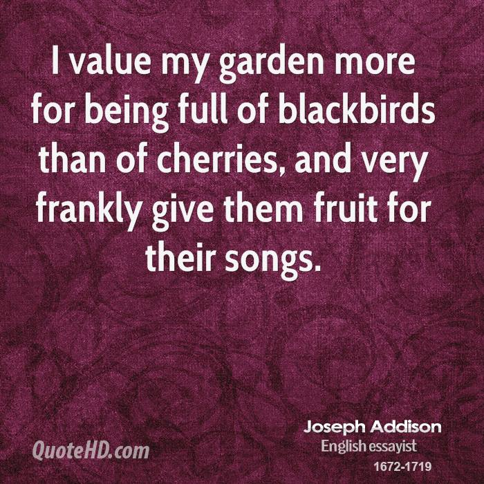 I value my garden more for being full of blackbirds than of cherries, and very frankly give them fruit for their songs.