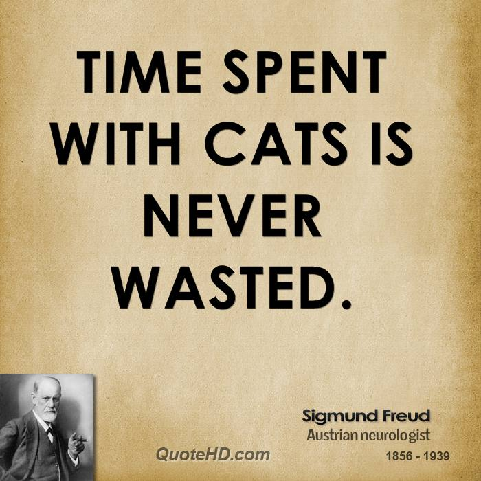 Sigmund Freud Time Quotes Quotehd