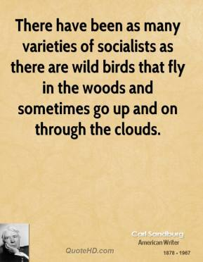 Carl Sandburg - There have been as many varieties of socialists as there are wild birds that fly in the woods and sometimes go up and on through the clouds.