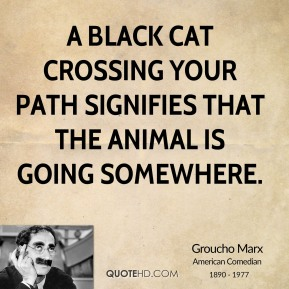 Groucho Marx - A black cat crossing your path signifies that the animal is going somewhere.