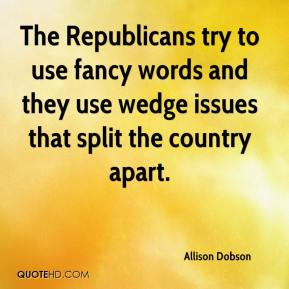 Allison Dobson - The Republicans try to use fancy words and they use wedge issues that split the country apart.