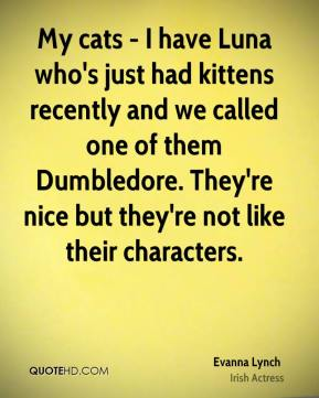 My cats - I have Luna who's just had kittens recently and we called one of them Dumbledore. They're nice but they're not like their characters.