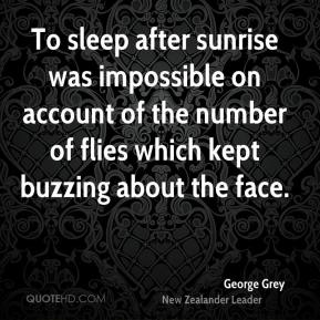 George Grey - To sleep after sunrise was impossible on account of the number of flies which kept buzzing about the face.