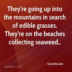 They're going up into the mountains in search of edible grasses. They're on the beaches collecting seaweed.