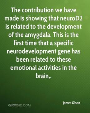 James Olson - The contribution we have made is showing that neuroD2 is related to the development of the amygdala. This is the first time that a specific neurodevelopment gene has been related to these emotional activities in the brain.