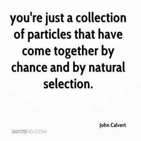 John Calvert  - you're just a collection of particles that have come together by chance and by natural selection.