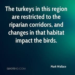 Mark Wallace  - The turkeys in this region are restricted to the riparian corridors, and changes in that habitat impact the birds.