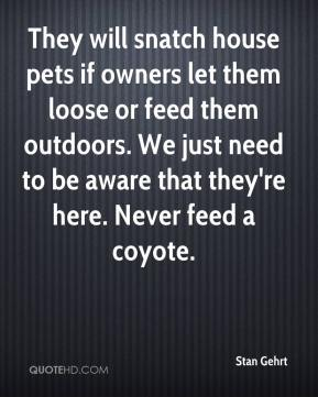 They will snatch house pets if owners let them loose or feed them outdoors. We just need to be aware that they're here. Never feed a coyote.