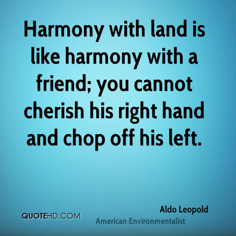Funny Quotes About Harmony. QuotesGram