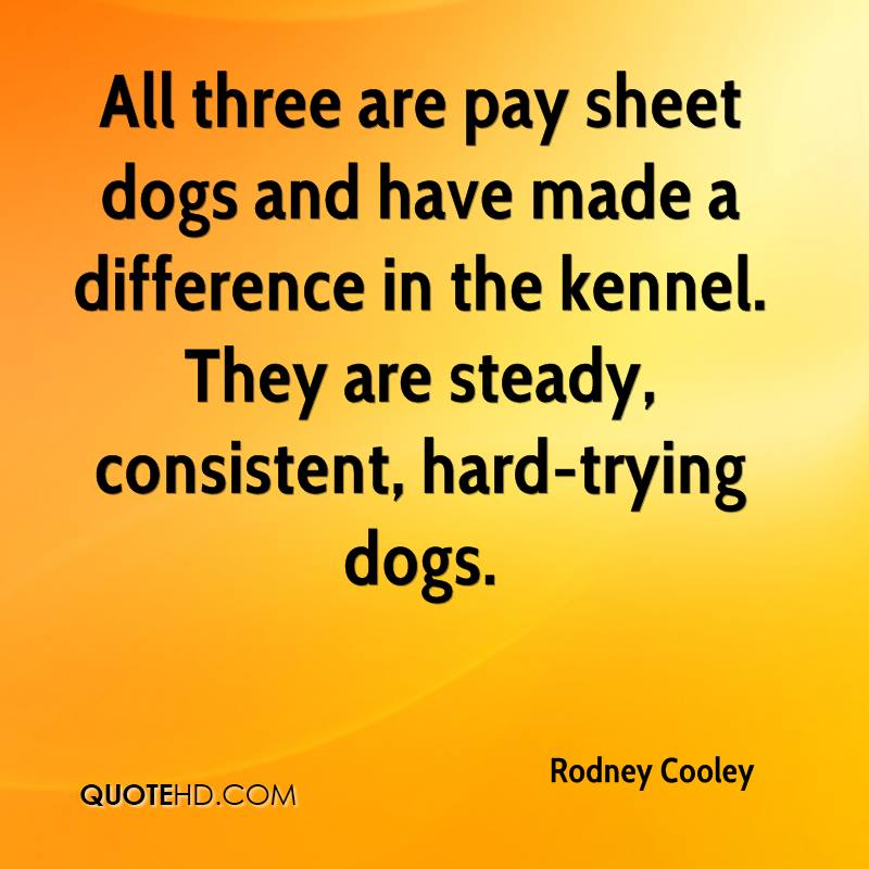 All three are pay sheet dogs and have made a difference in the kennel. They are steady, consistent, hard-trying dogs.
