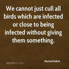 Aburizal Bakrie - We cannot just cull all birds which are infected or close to being infected without giving them something.