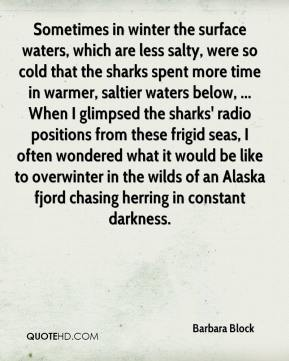 Sometimes in winter the surface waters, which are less salty, were so cold that the sharks spent more time in warmer, saltier waters below, ... When I glimpsed the sharks' radio positions from these frigid seas, I often wondered what it would be like to overwinter in the wilds of an Alaska fjord chasing herring in constant darkness.