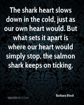 Barbara Block - The shark heart slows down in the cold, just as our own heart would. But what sets it apart is where our heart would simply stop, the salmon shark keeps on ticking.