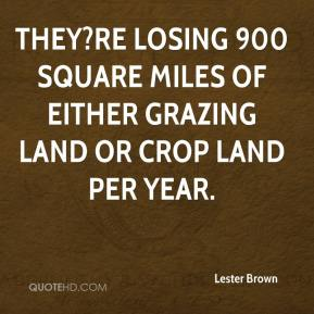Lester Brown  - They?re losing 900 square miles of either grazing land or crop land per year.