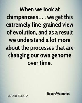 Robert Waterston  - When we look at chimpanzees . . . we get this extremely fine-grained view of evolution, and as a result we understand a lot more about the processes that are changing our own genome over time.