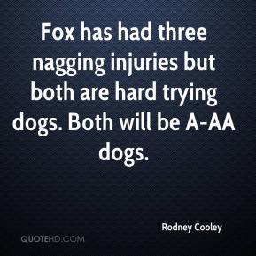 Fox has had three nagging injuries but both are hard trying dogs. Both will be A-AA dogs.