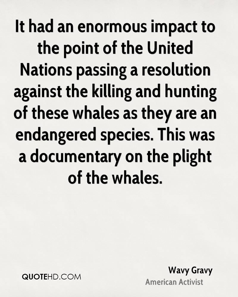 It had an enormous impact to the point of the United Nations passing a resolution against the killing and hunting of these whales as they are an endangered species. This was a documentary on the plight of the whales.
