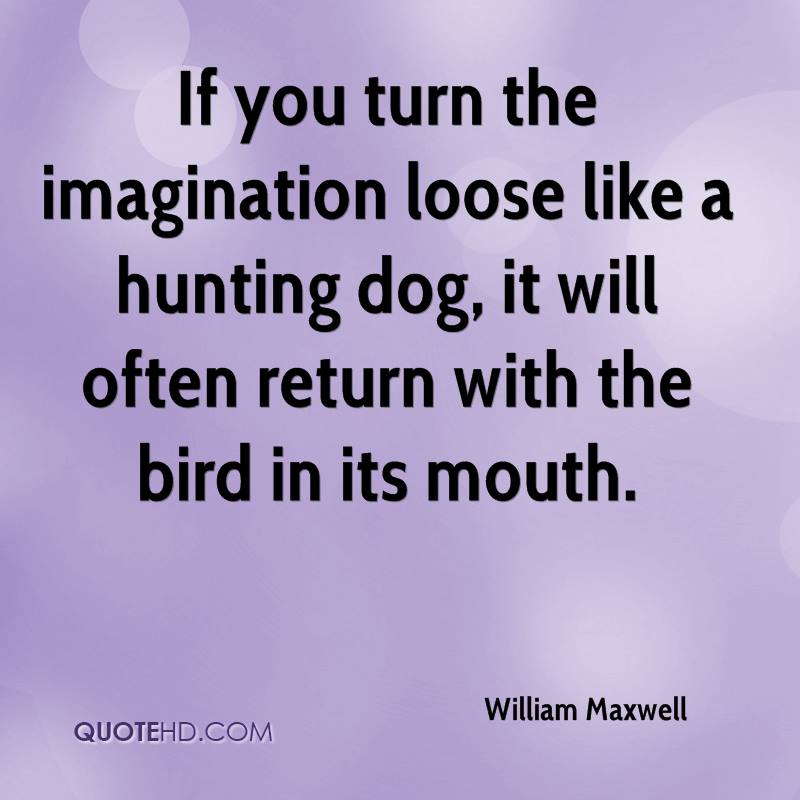 If you turn the imagination loose like a hunting dog, it will often return with the bird in its mouth.
