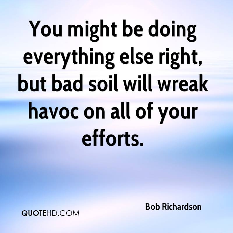 You might be doing everything else right, but bad soil will wreak havoc on all of your efforts.