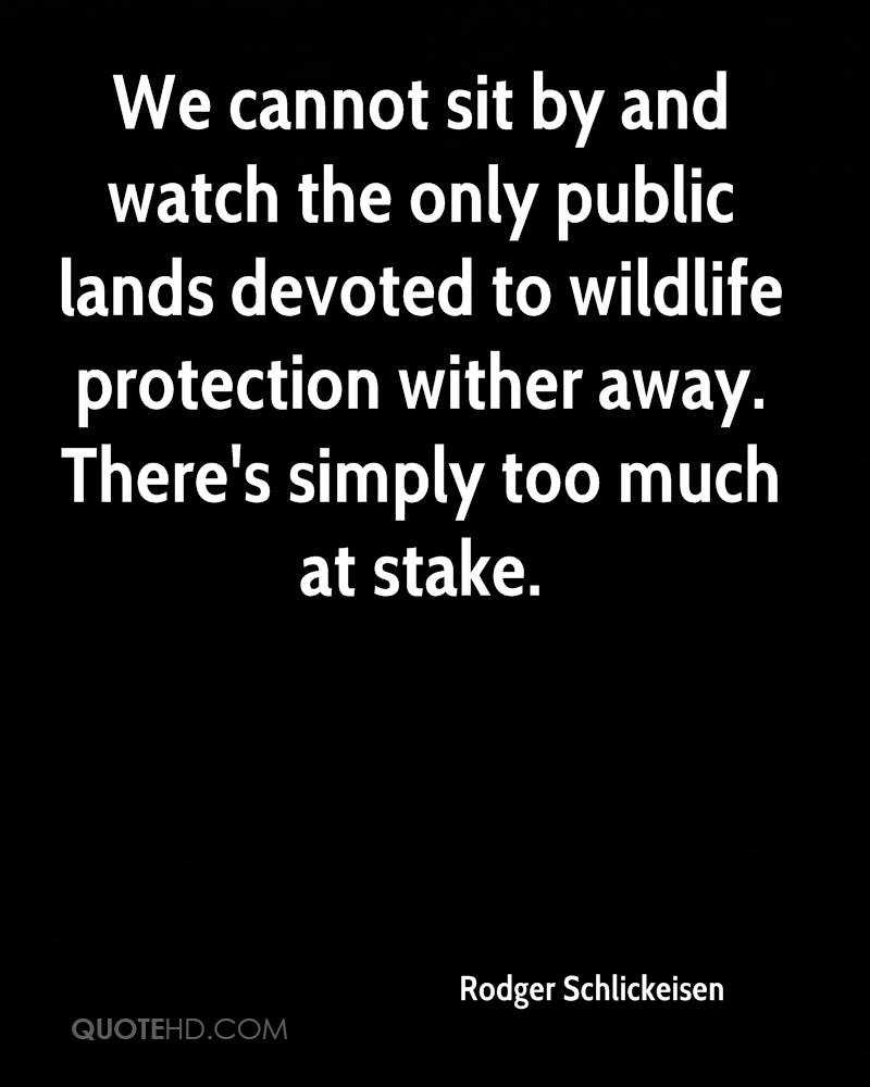 We cannot sit by and watch the only public lands devoted to wildlife protection wither away. There's simply too much at stake.