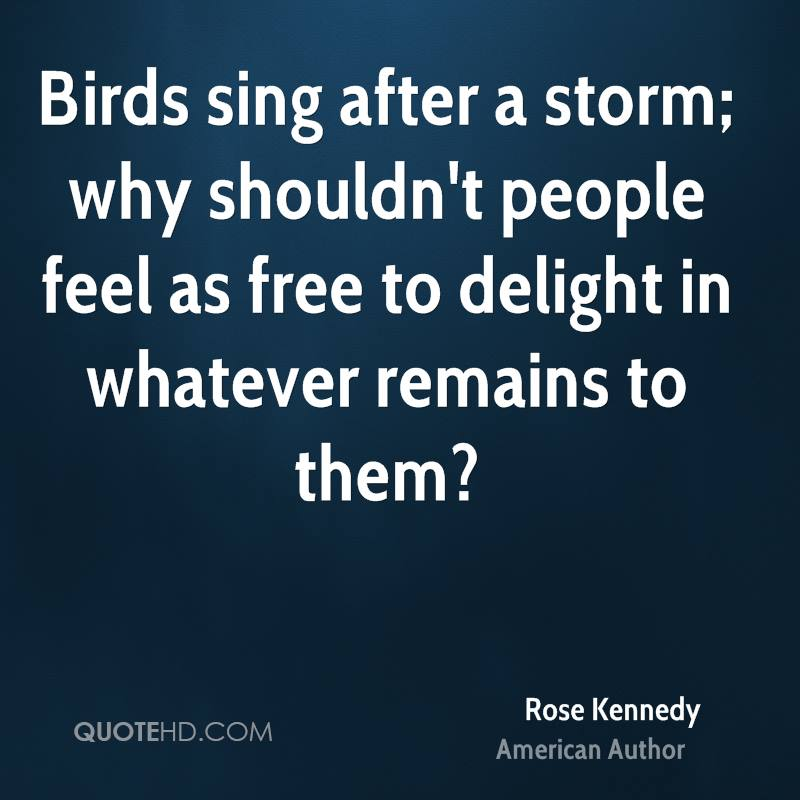 After The Storm Quotes Simple Rose Kennedy Nature Quotes QuoteHD