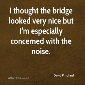 David Pritchard - I thought the bridge looked very nice but I'm especially concerned with the noise.