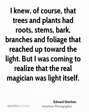 Edward Steichen - I knew, of course, that trees and plants had roots, stems, bark, branches and foliage that reached up toward the light. But I was coming to realize that the real magician was light itself.