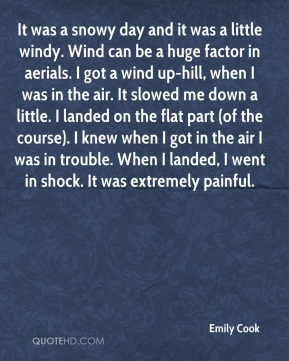 Emily Cook - It was a snowy day and it was a little windy. Wind can be a huge factor in aerials. I got a wind up-hill, when I was in the air. It slowed me down a little. I landed on the flat part (of the course). I knew when I got in the air I was in trouble. When I landed, I went in shock. It was extremely painful.