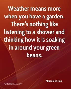 Weather means more when you have a garden. There's nothing like listening to a shower and thinking how it is soaking in around your green beans.
