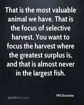 Phil Durocher  - That is the most valuable animal we have. That is the focus of selective harvest. You want to focus the harvest where the greatest surplus is, and that is almost never in the largest fish.