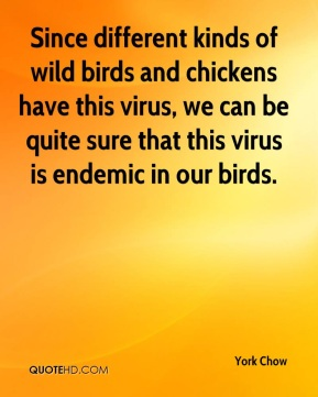 Since different kinds of wild birds and chickens have this virus, we can be quite sure that this virus is endemic in our birds.