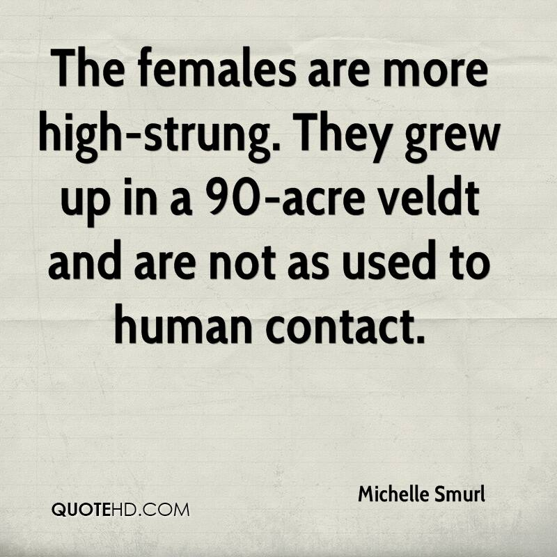 The females are more high-strung. They grew up in a 90-acre veldt and are not as used to human contact.