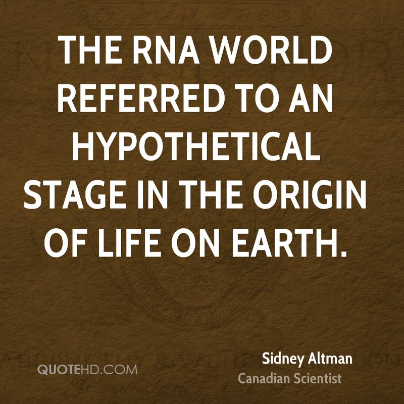 the rna world and the origins Abstract before the origin of simple cellular life, the building blocks of rna (nucleotides) had to form and polymerize in favorable environments on early earth.