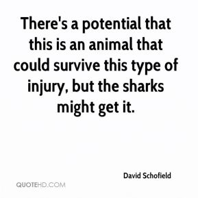 David Schofield - There's a potential that this is an animal that could survive this type of injury, but the sharks might get it.