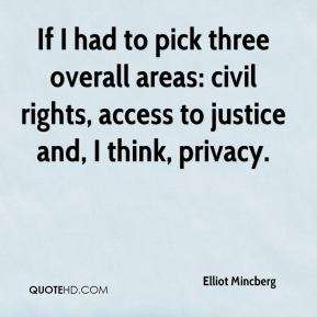 If I had to pick three overall areas: civil rights, access to justice and, I think, privacy.