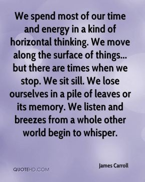 James Carroll - We spend most of our time and energy in a kind of horizontal thinking. We move along the surface of things... but there are times when we stop. We sit sill. We lose ourselves in a pile of leaves or its memory. We listen and breezes from a whole other world begin to whisper.