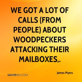 We got a lot of calls (from people) about woodpeckers attacking their mailboxes.