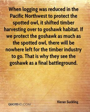 Kieran Suckling  - When logging was reduced in the Pacific Northwest to protect the spotted owl, it shifted timber harvesting over to goshawk habitat. If we protect the goshawk as much as the spotted owl, there will be nowhere left for the timber industry to go. That is why they see the goshawk as a final battleground.