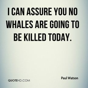 Paul Watson  - I can assure you no whales are going to be killed today.
