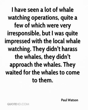 Paul Watson  - I have seen a lot of whale watching operations, quite a few of which were very irresponsible, but I was quite impressed with the local whale watching. They didn't harass the whales, they didn't approach the whales. They waited for the whales to come to them.