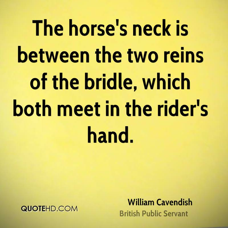 The horse's neck is between the two reins of the bridle, which both meet in the rider's hand.