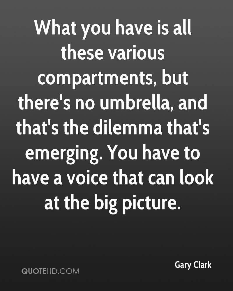 What you have is all these various compartments, but there's no umbrella, and that's the dilemma that's emerging. You have to have a voice that can look at the big picture.